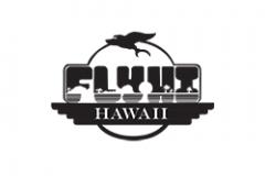 Fly Hi Hawaii
